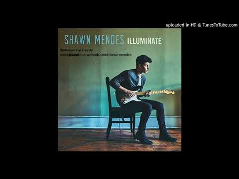Shawn Mendes - Like This lyrics