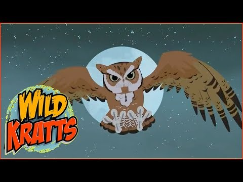► Wild Kratts HD - A Bat in the Brownies - Wild Kratts Full Episodes in English