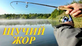 ЩУЧИЙ ЖОР Как легко поймать щуку на спиннинг Осенняя рыбалка на Щуку