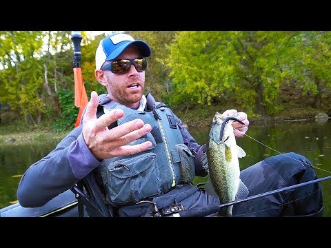 How To Fish Small Creeks For Largemouth & Smallies