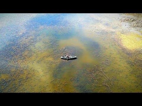 В ЭТОМ БОЛОТЕ МНОГО КАРАСЯ. Поплавок крупным планом. Рыбалка на карася с поплавочной удочкой.
