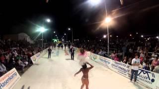 Carnavales Hasenkamp 2014 malibu