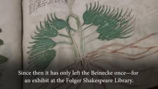What We Know About the Voynich Manuscript