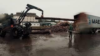 Załadunek i transport drewna. Kontener. Mercedes Actros 450KM.