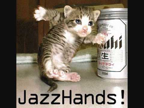 Youtube Cat Jazz Hands