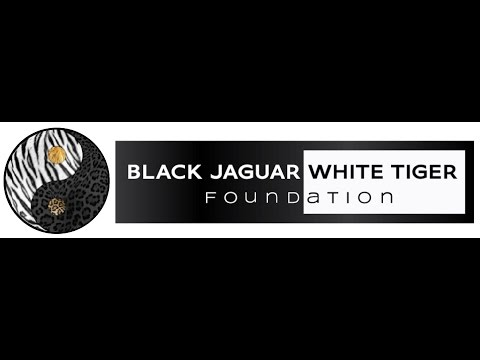 Black Jaguar White Tiger Foundation - YouTube - photo#2