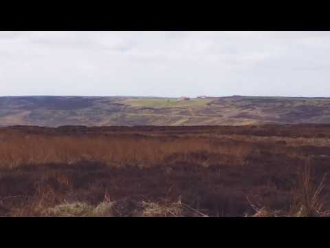 Intensive farming of Grouse on North Yorkshire moors