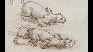 Biografia di leonardola vita leonardo15 aprile 1452 - 2 maggio 1519 da un amore illegittimo, il 15 1452, nasce leonardo a...