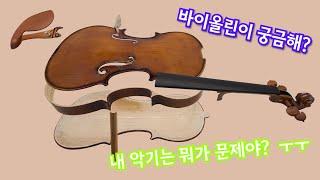 초보 연습용 바이올린 초보자 가격 추천