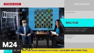 Первая шахматная онлайн-студия открылась в Москве - Москва 24