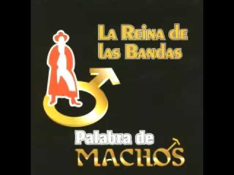 Descargar Video Banda Machos...