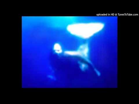 mermaids 2014 proof mako iland sick photo