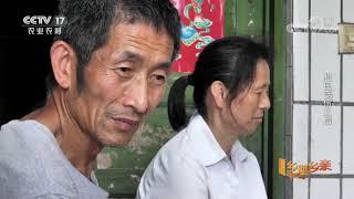 《乡理乡亲》 20201219 村民受伤之后 CCTV农业 - YouTube