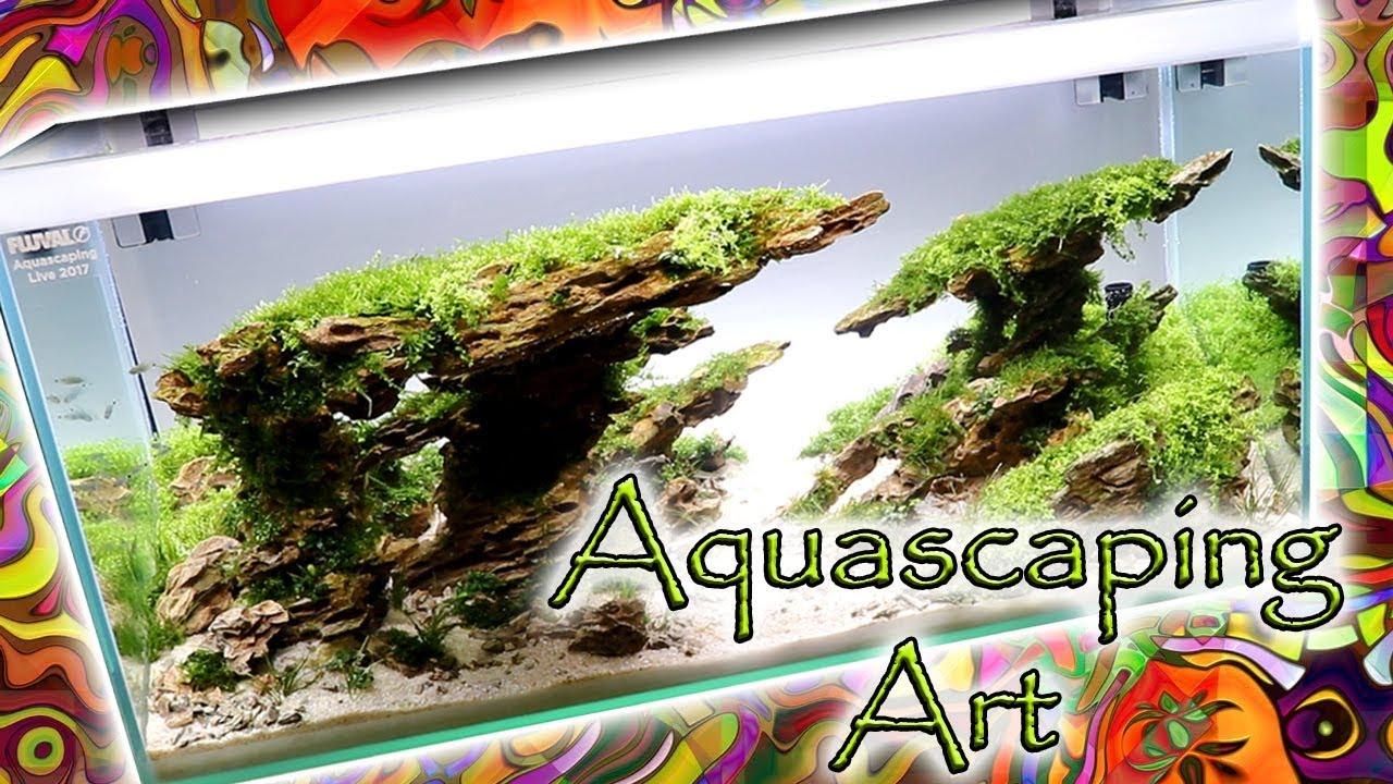 Aquascaping Art   Most Beautiful Tanks Ever!   AGA Aquascape Contest Chicago  Aquatic Experience