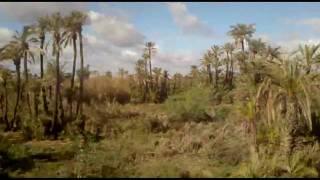 видео Транспорт в Марокко