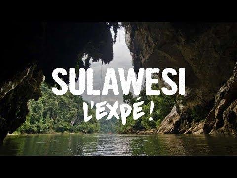 Expédition Sulawesi, un voyage exceptionnel en Indonésie !