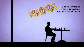 The Genetics of Alzheimer's