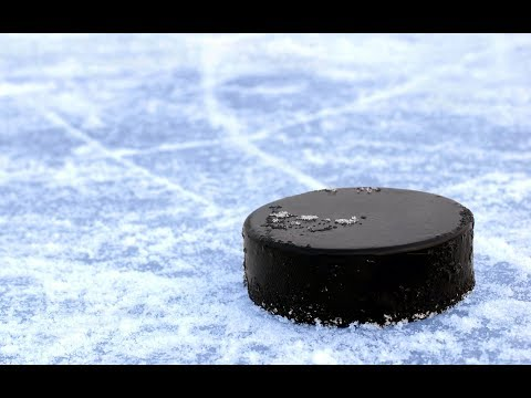 NHL Picks and giveaway for cryptofantasysports com 2/22/18