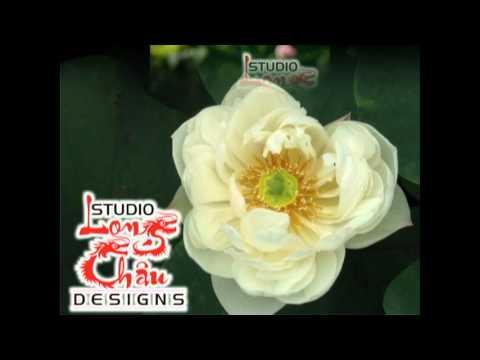 Nhạc Phật Giáo Không Lời (rất Hay)