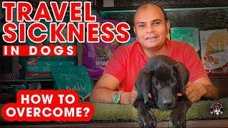 Why Dog Have Travel Sickness ? | BIG PROBLEM | Do's and Don'ts Tips For All Breed | Baadal Bhandaari