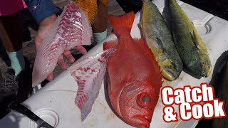 Catching Mahi & Toro Snapper off Key Largo   Catch and Cook