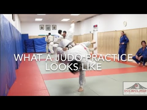 What a Judo practice looks like