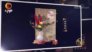 [我们的节日-2019中秋]中秋时令插花居然可以这么美| CCTV科教