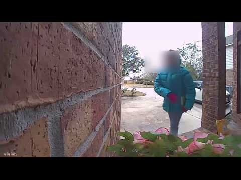 Don Action Jackson - Girl Scout On Doorbell Cam REALLY Wants You Get Her Cookies