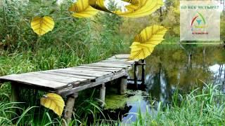 Река Северский Донец. Чугуев (Харьковская область, Украина)(, 2015-02-05T18:20:20.000Z)