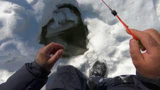 Рыбалка на Озере.Отличный клёв..