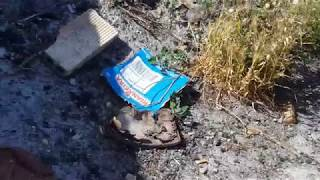 Los Garres: basura junto a paseo y zona de ocio