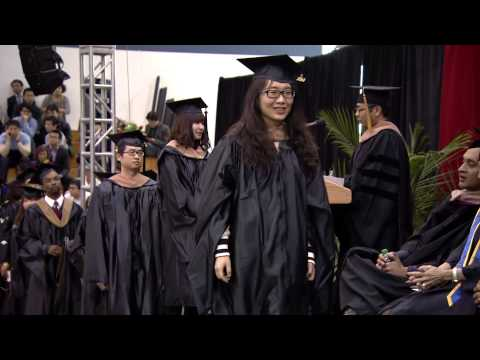 IIT-Stuart School of Business 2014 Commencement
