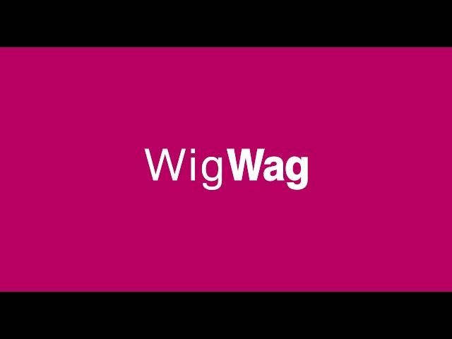 WigWag | Kestrel Illustration Time-lapse