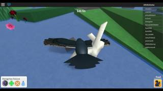 Roblox bird simulator (falcon and sounds!!!)