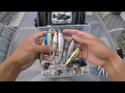 Inside 1Rod1ReelFishing's Tackle Bag 8/4/15