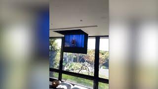 Ellen's Home Quarantine: A Meta Moment
