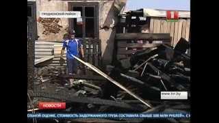 Под Гродно сгорел приют для бездомных собак
