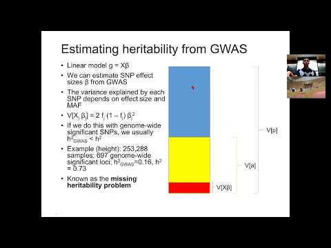MIT Compbio Lecture 16 - Heritability - YouTube