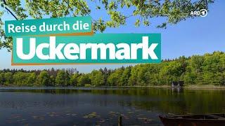 Uckermark: Natur und Seen   WDR Reisen