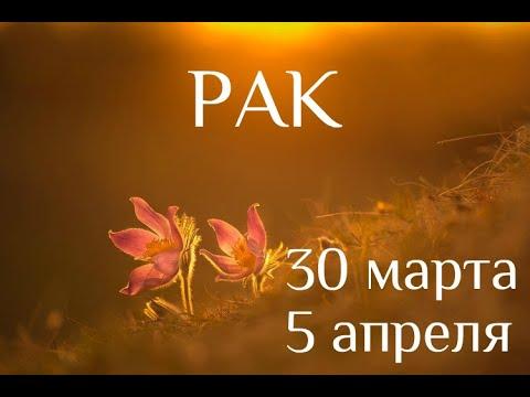 РАК. Таро-прогноз на 30 марта-5 апреля 2020. Таро-гороскоп для Раков от Ирины Захарченко.