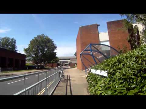 A student's view of life at Sussex