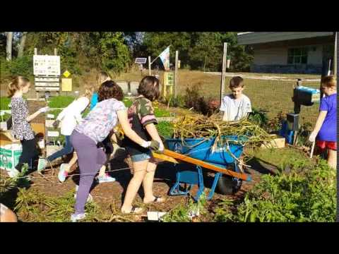 Willow Spring Elementary School Student Garden Youtube