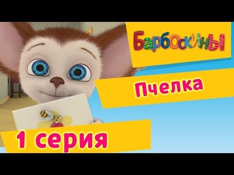 Барбоскины - 1 Серия. Пчёлка (мультфильм) thumbnail