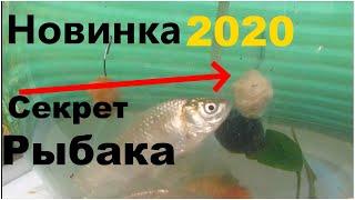 Топ наживка 2020.Непредсказуемость Поражает Воображение.Наживка для рыбалки.Рыбалка 2020.Прикормка.