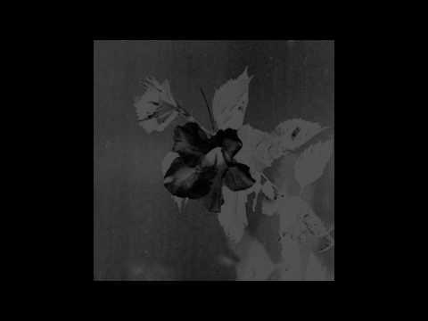 Jefre Cantu-Ledesma - Visiting This World (2012) FULL ALBUM