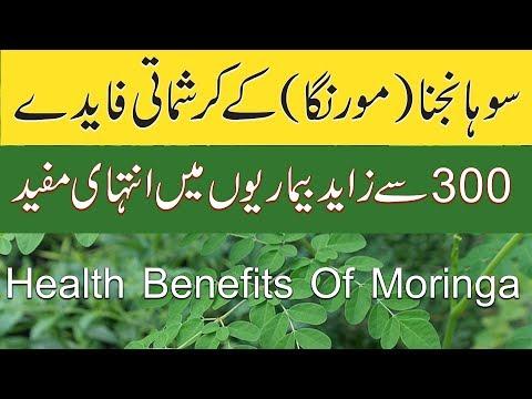 sohanjna benefits in urdu | health benefits of moringa in urdu | moringa oleifera