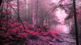 Richard Wagner -Rienzi- Overture