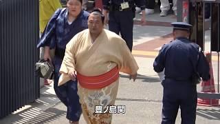 1、碧山関(aoiyama) 2、大奄美関(daiamami)・大翔丸関(daisyomaru) 3、...