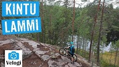 Kintulammin retkeily- ja luonnonsuojelualue, Tampere