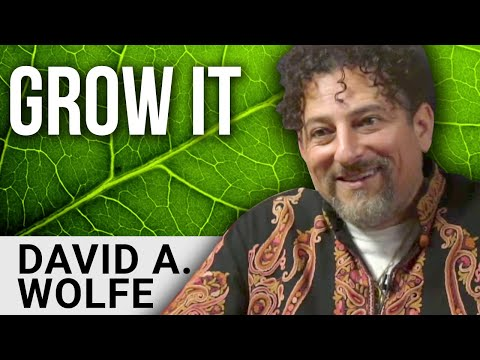 GROW YOUR OWN FOOD - David Avocado Wolfe